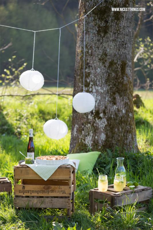 Weinkisten Picknick mit Melonenlimonade und Bärla...