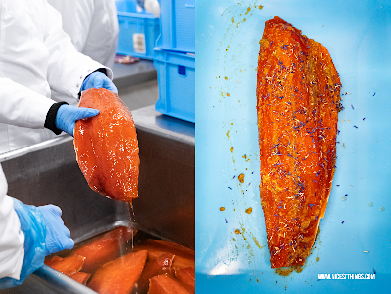 Graved Lachs gebeizt Friedrichs Fisch Feinfisch Manufactur Alaska Wildlachs