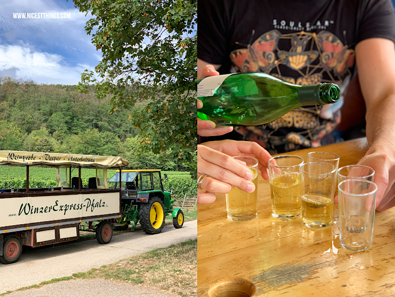 Winzerexpress Pfalz Planwagenfahrt Traktorfahrt Weingut Lang Bad Dürkheim