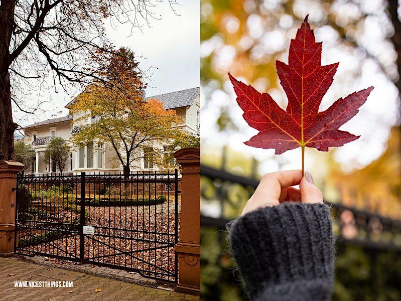 Herbstspaziergang Villa Blatt